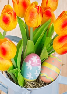 Closeup painted Easter eggs and colorful tulips
